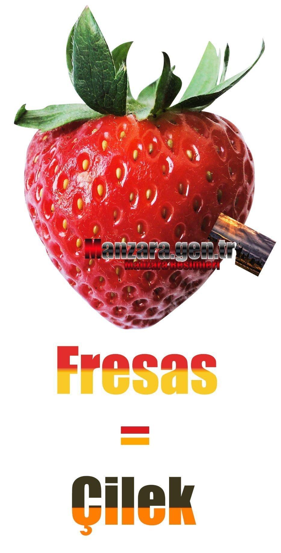 Çileğin İspanyolcası (Fresas)