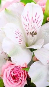 çiçek buketi 1080x1920