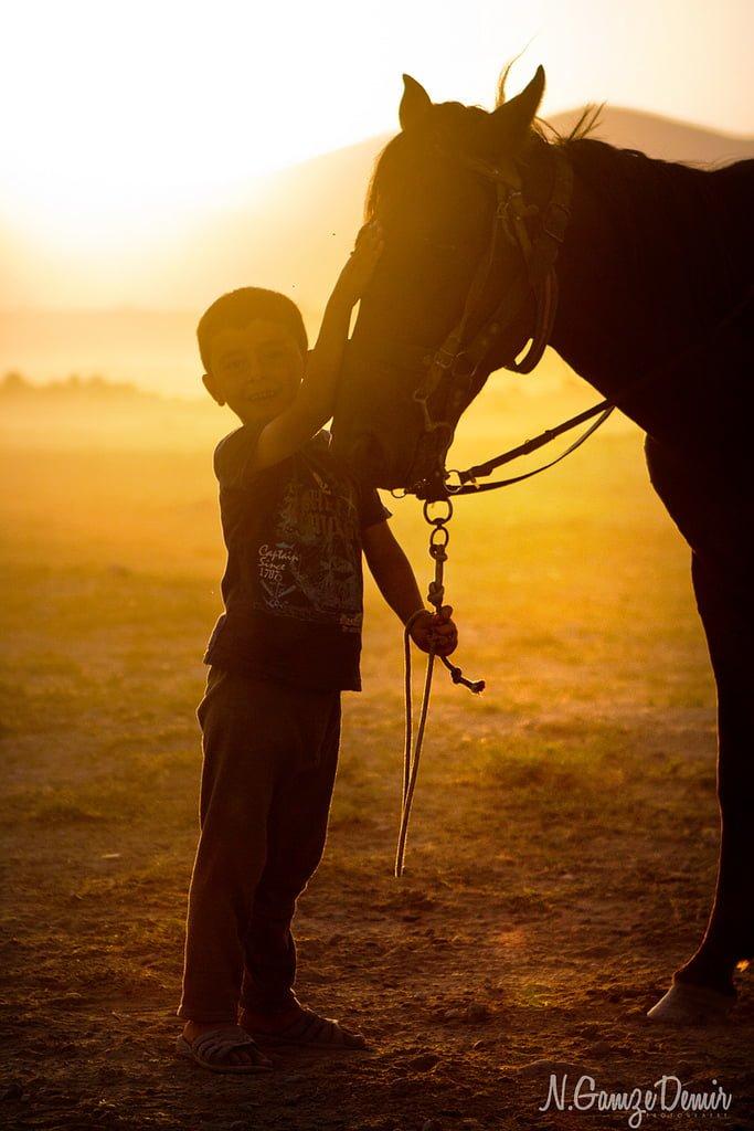 çocuk ve at