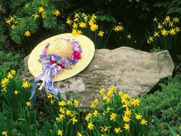 Şapka ve çiçekler