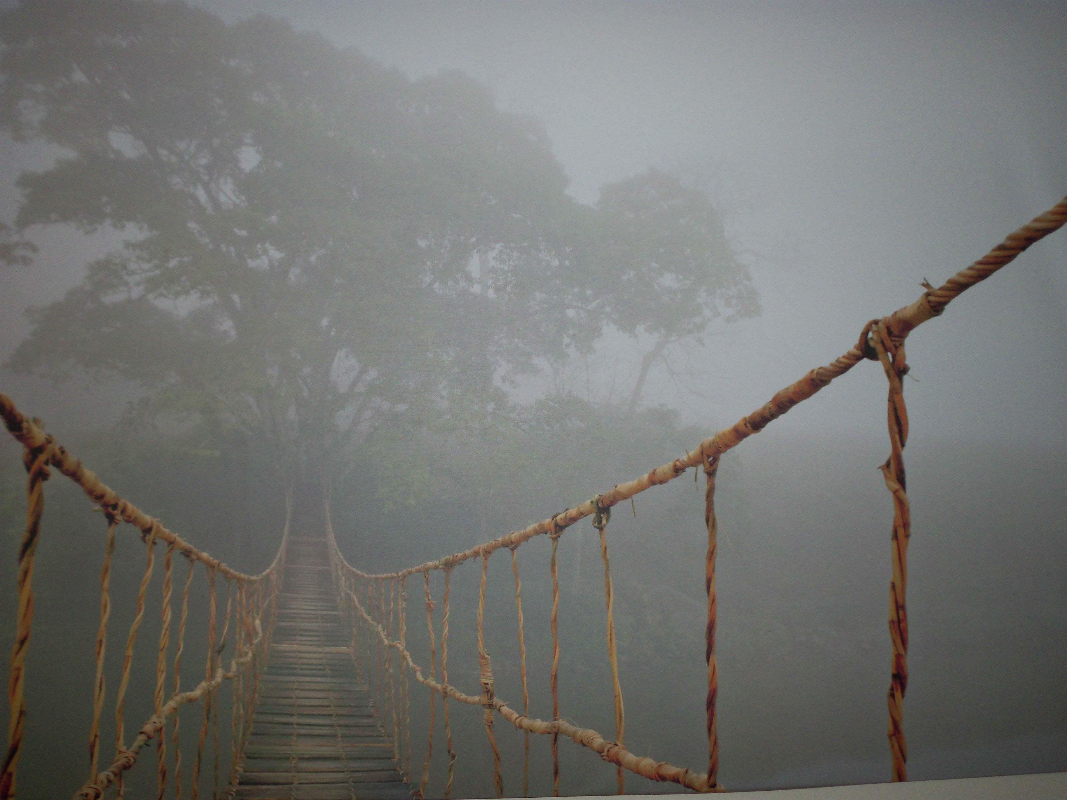 sisli yol