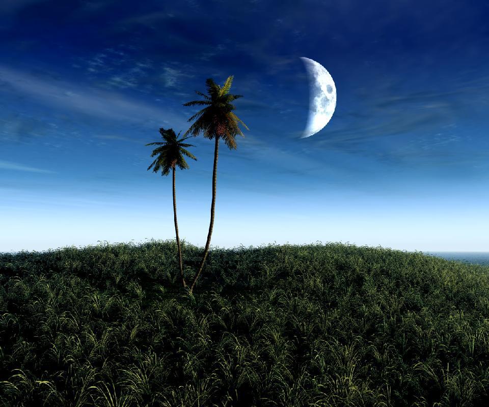 Eşsiz Güzellikleriyle Doğa Resimleri