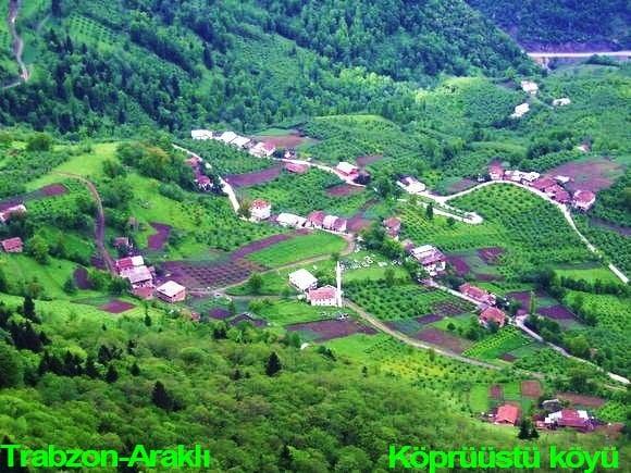 Araklı köprüüstü köyü TRABZON