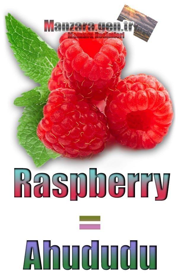 Ahududu İngilizcesi (Raspberry)