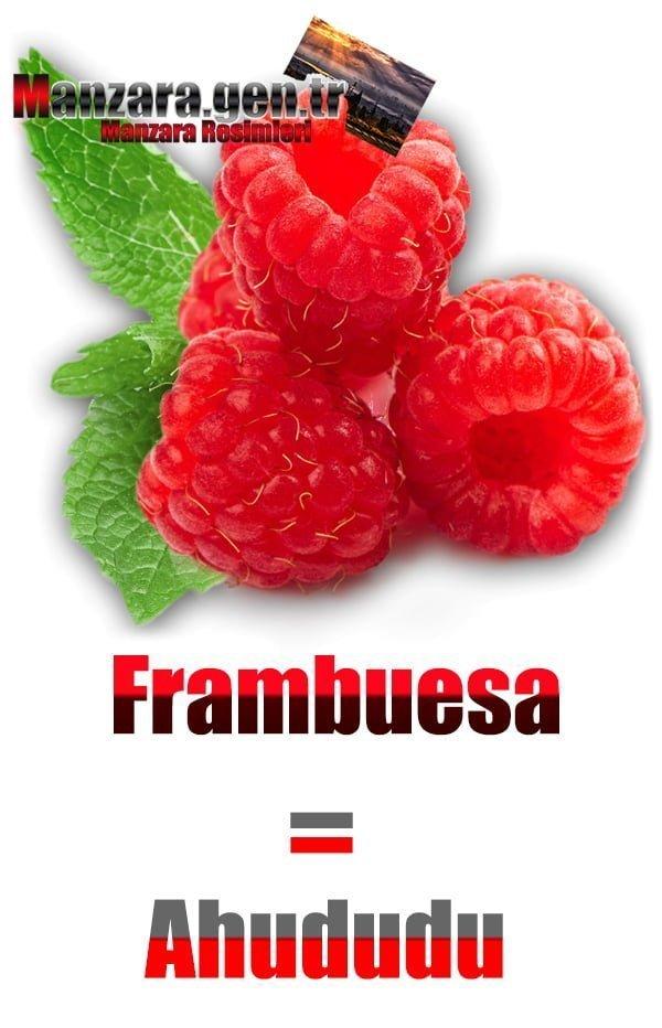 Ahududu İspanyolcası (Frambuesa)