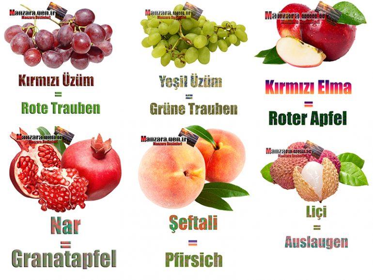 Almanca Meyve İsimleri