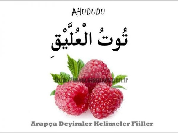 Arapça Ahududu