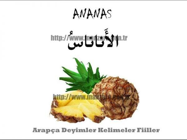 Arapça ananas yazısı ve resmi