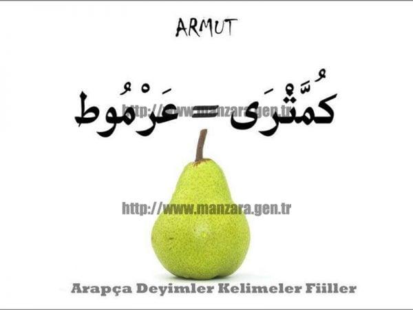 Arapça Armut