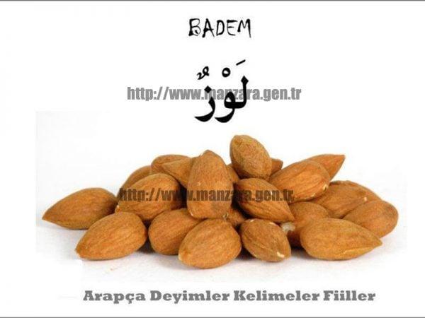 Arapça badem yazısı ve resmi