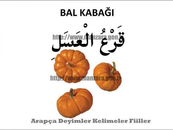 Arapça balkabağı yazısı ve resmi