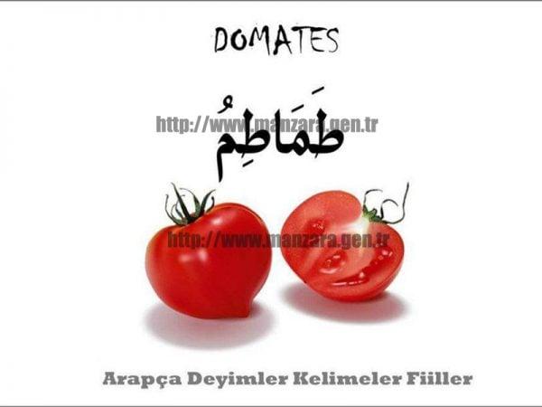Arapça domates yazısı ve resmi