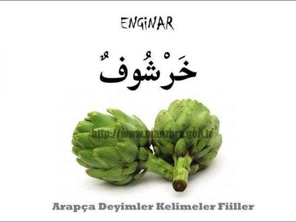 Arapça enginar yazısı ve resmi