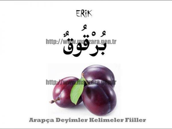 Arapça erik yazısı ve resmi