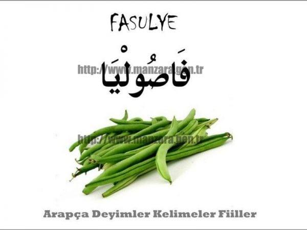 Arapça fasulye yazısı ve resmi