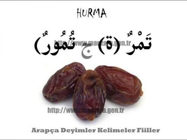 Arapça hurma yazısı ve resmi