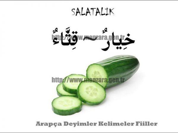 Arapça salatalık yazısı ve resmi