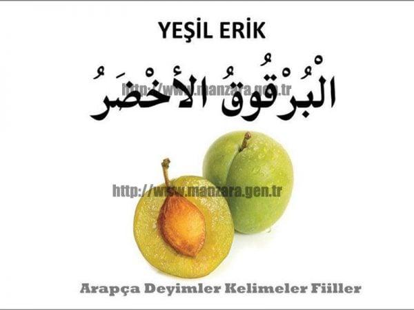 Arapça yeşil erik yazısı ve resmi