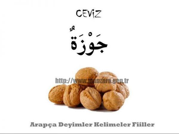 Arapça ceviz yazısı ve resmi