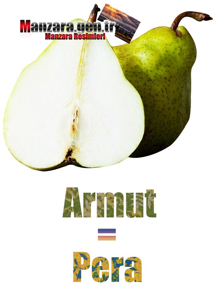 Armutun İtalyancası Nedir ? Armut İtalyanca Nasıl Yazılır ? Che cos'è il turco pera? Come scrivere Pear in turco?