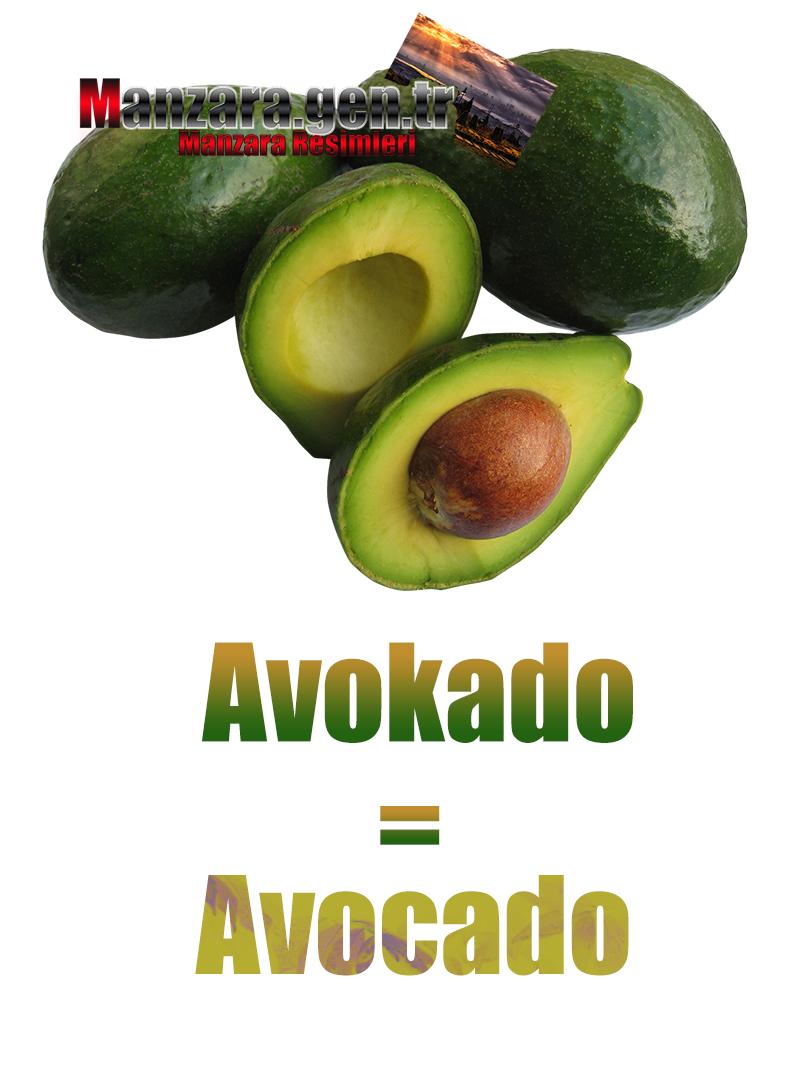 Avokadonun Almancası Nedir ? Avokado Almanca Nasıl Yazılır ? Was ist avocado Türkisch? Wie schreibe ich avocado auf Türkisch?
