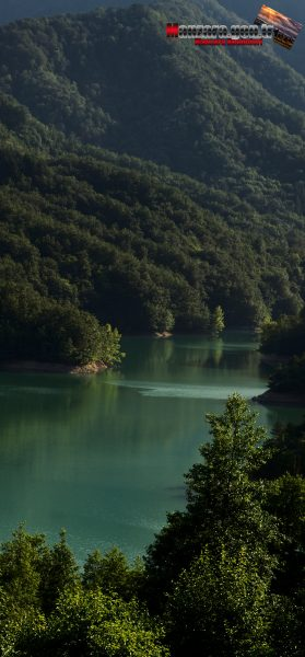 Büyük Ormanların İçindeki Harika Göl