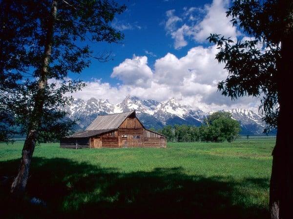 Büyüleyici doğa evi