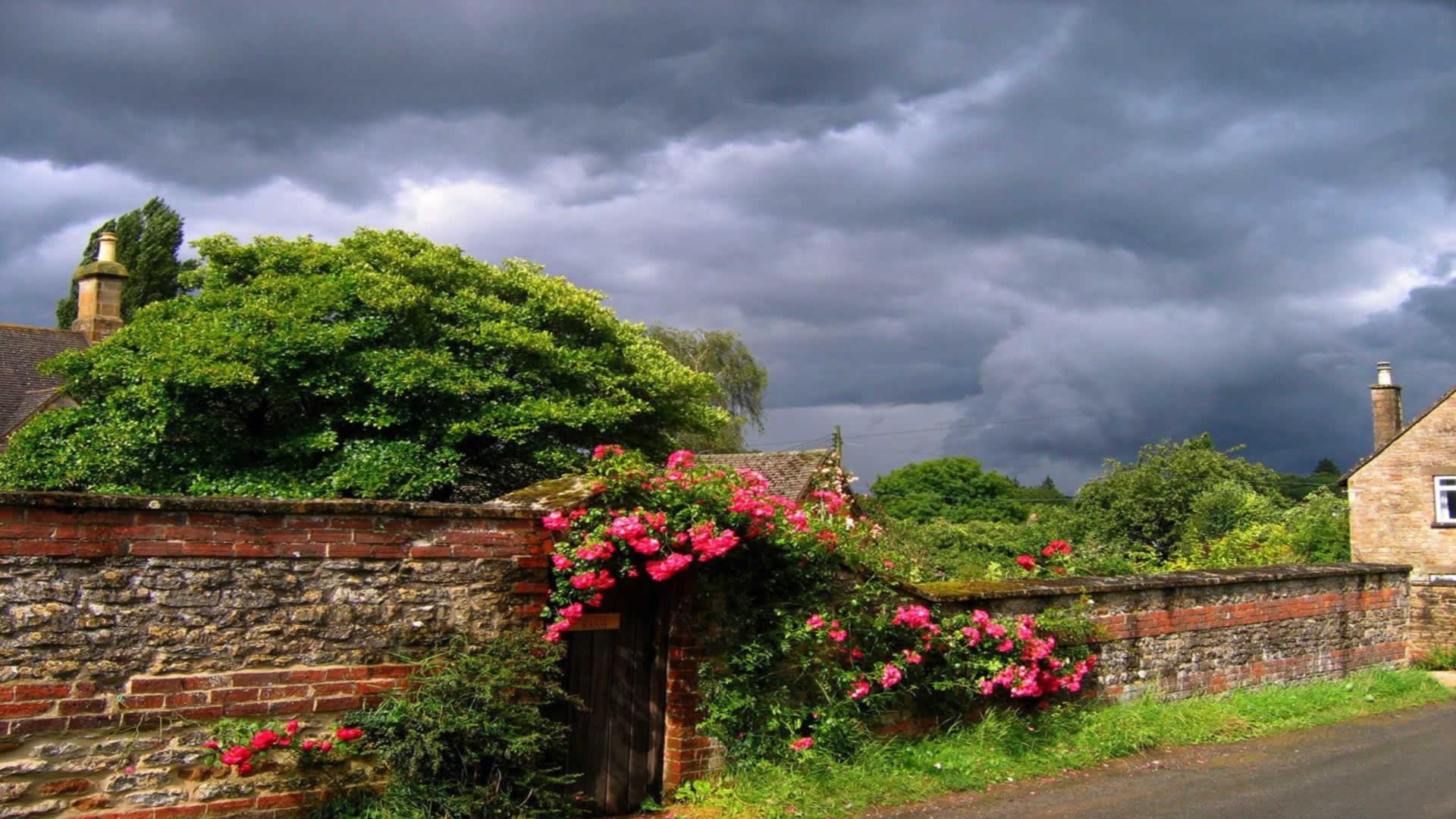 Bahçe-Resimleri-14