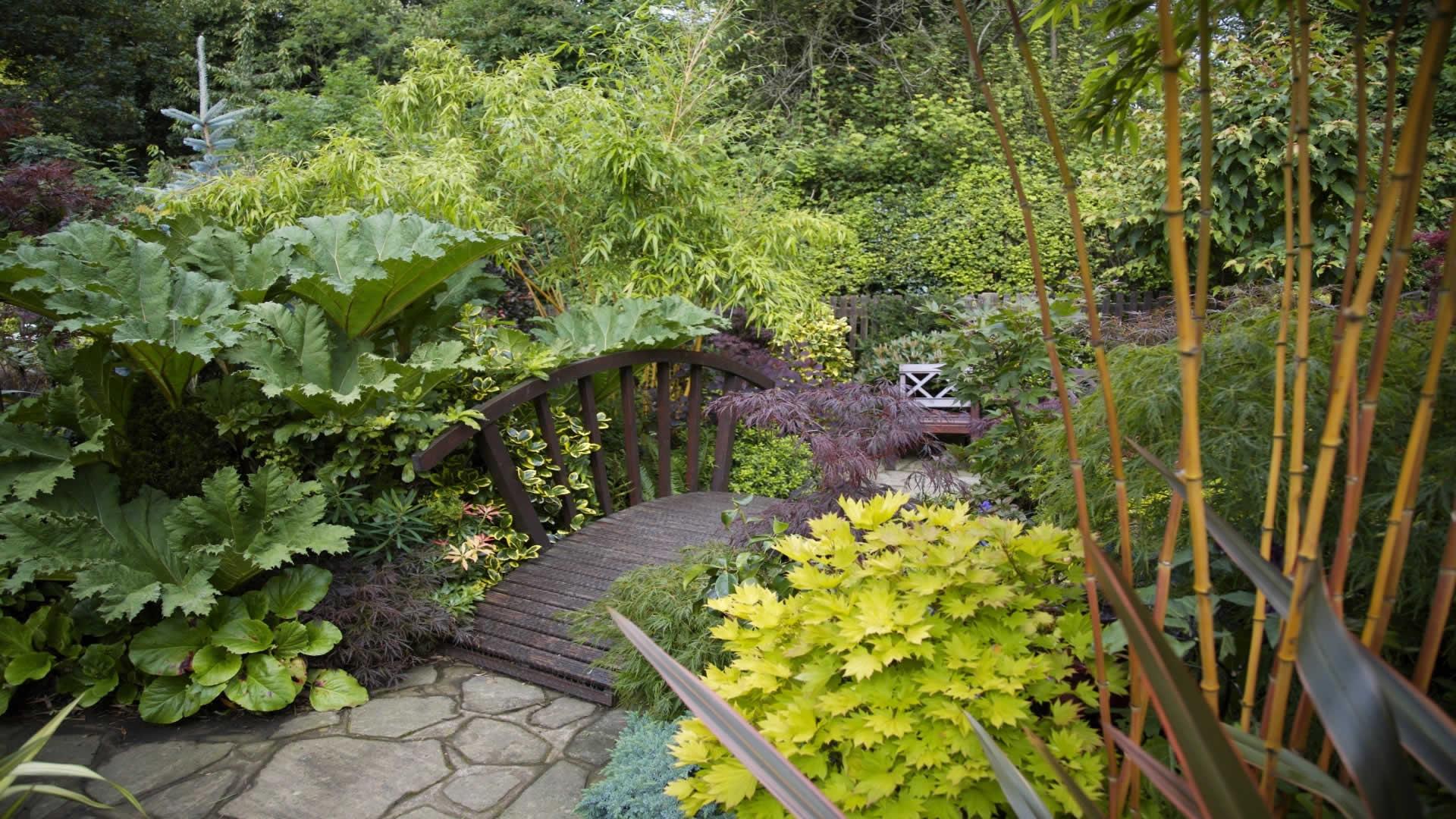 Bahçe-Resimleri-15
