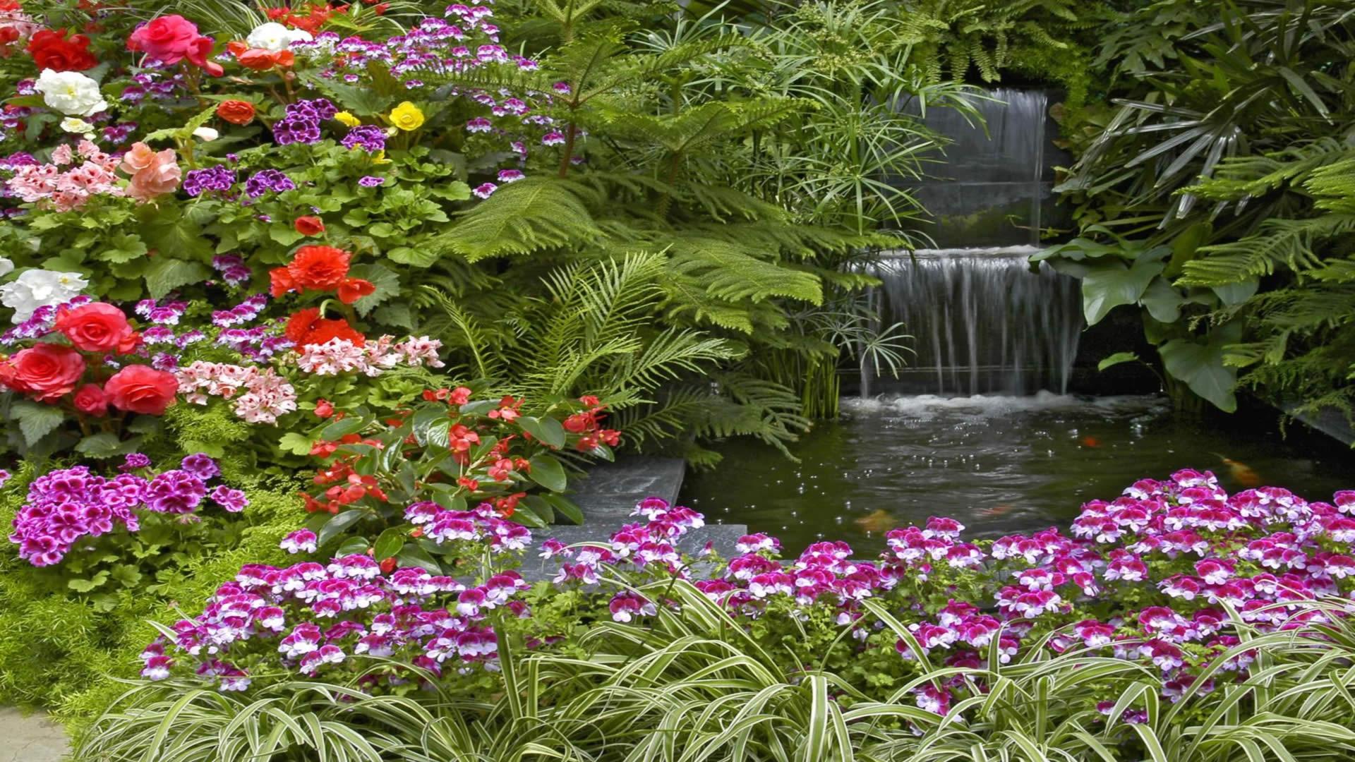 Bahçe Resimleri – 5