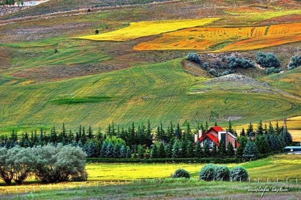 Beynam Köyü