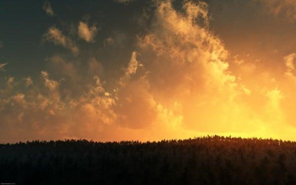 Bulut ve ağaçlı gün batımı