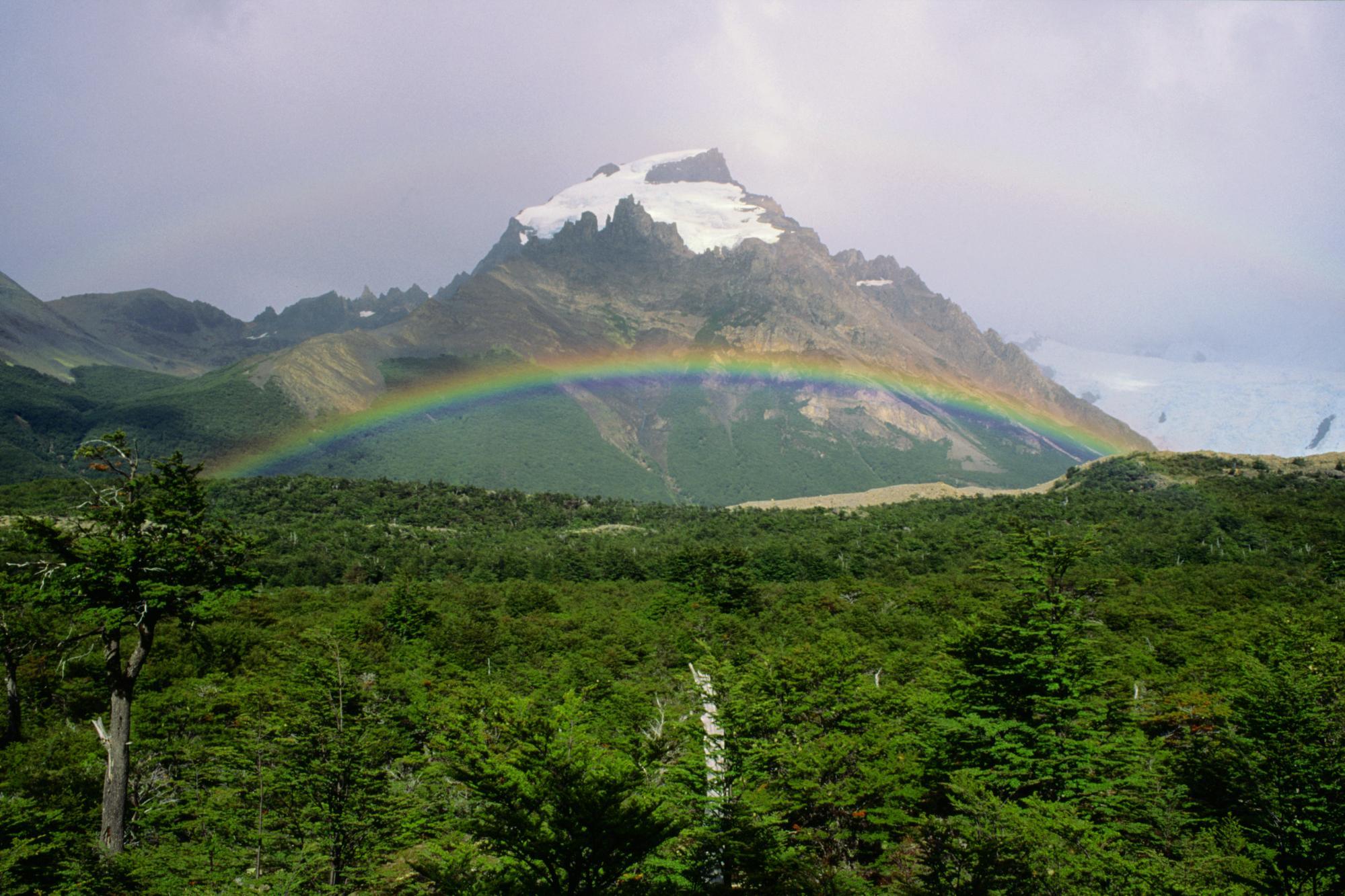 Dağın Ön Planında Gökkuşağı