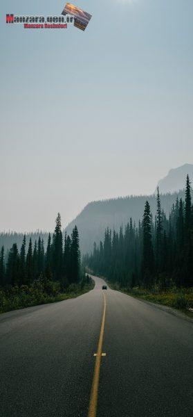 Dağların ve Ağaçların Arasından Süzülen Yol