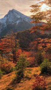 Dağlar ve Sonbahar Manzarası