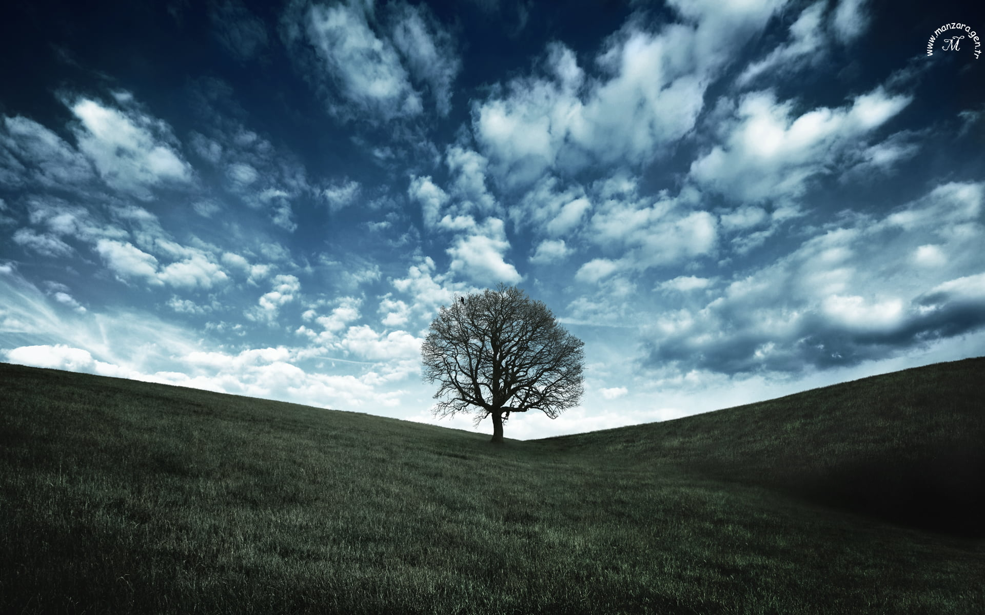 Doğa Fotoğrafları – 7