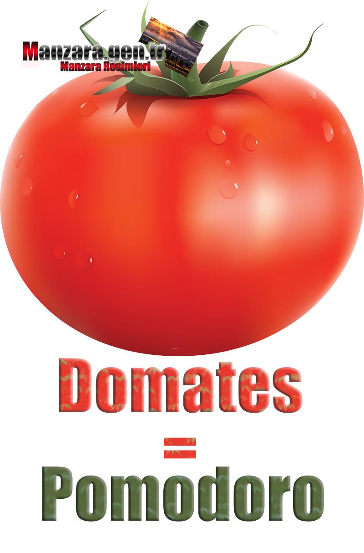 Domatesin İtalyancası Nedir ? Domates İtalyanca Nasıl Yazılır ? Che cos'è il pomodoro turco? Come scrivere i pomodori in turco?