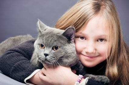 Kedilerin Farklı Halleri - Duman Rengi Kedi ve Çocuk