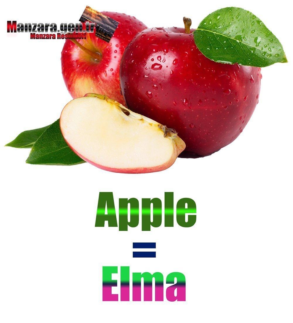 Elmanın İngilizcesi (Apple)
