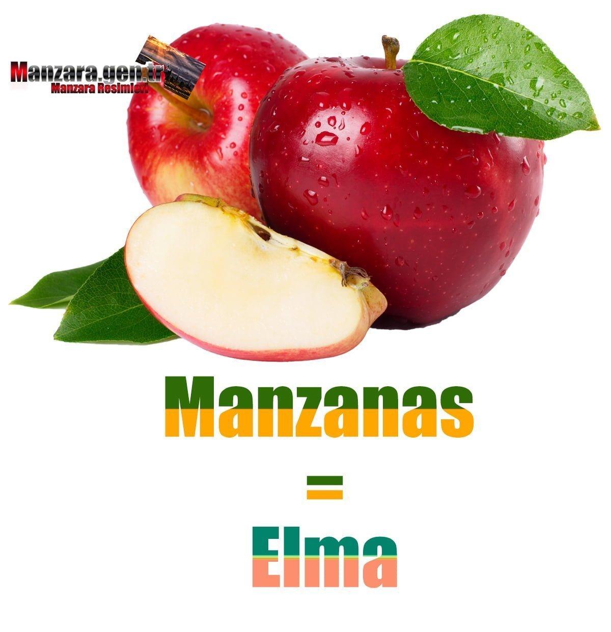 İspanyolca Meyve İsimleri - Elmanın İspanyolcası (Manzanas)