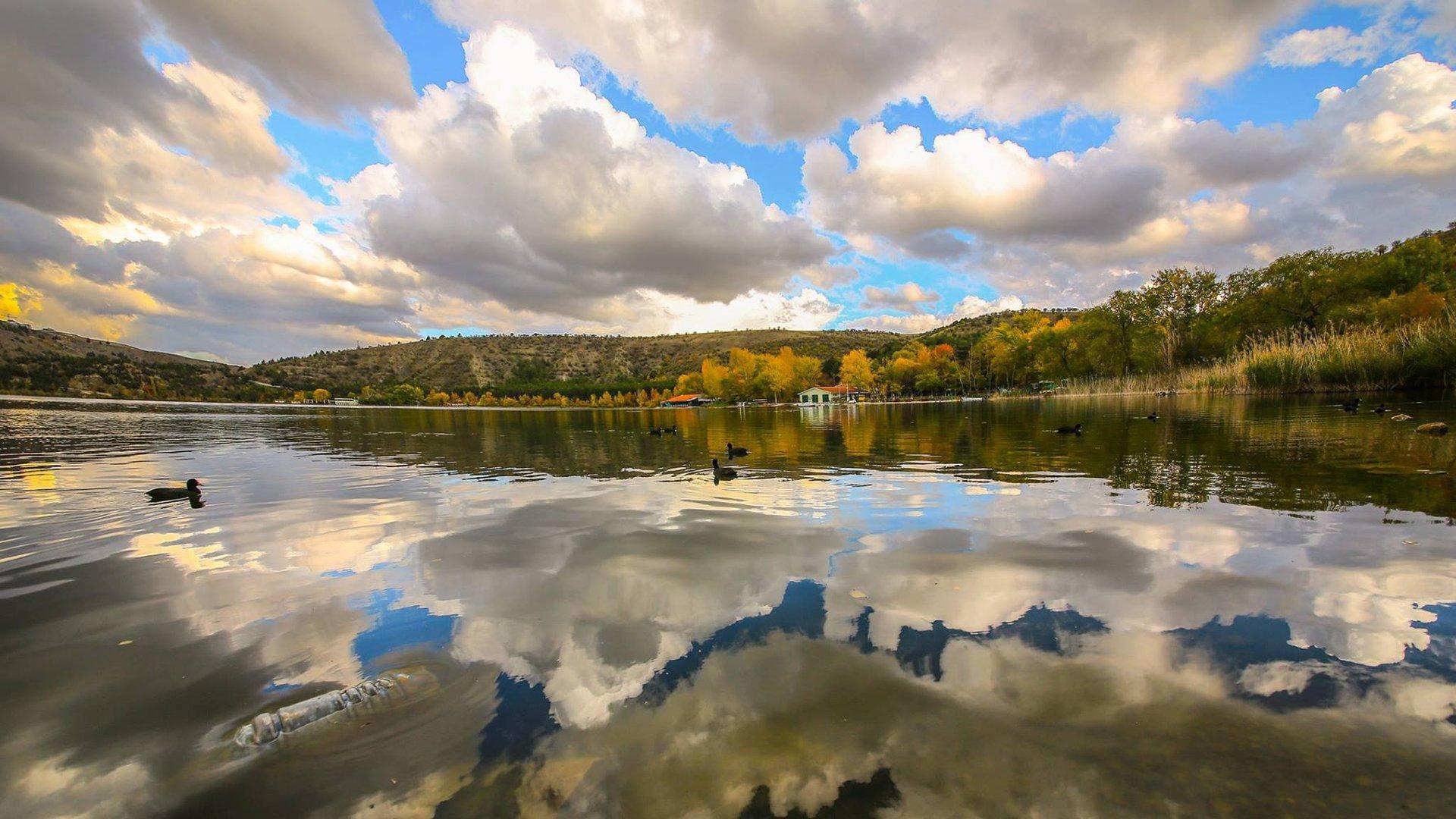 Eymir Gölü ve Ördekler