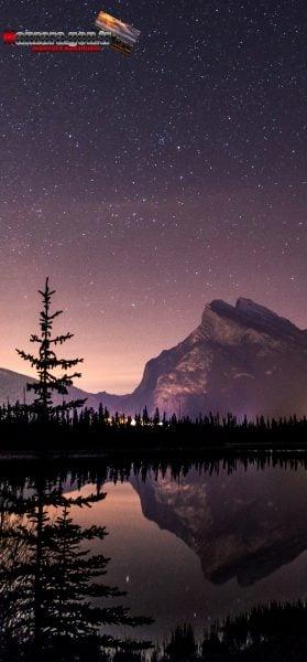 iPhone 11 Pro Max Duvar Kağıtları - Gölde ve Ormanda Yıldız Manzarası
