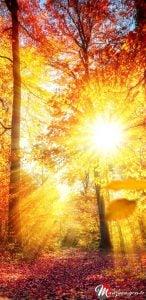Güneş Işını Note 8 Duvar Kağıdı