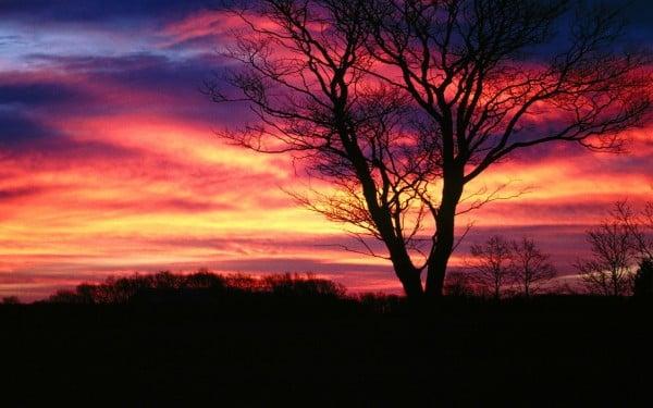 Güzel gün batımı resimleri