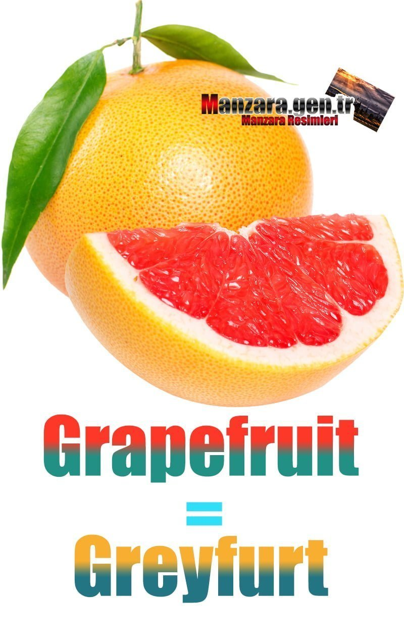 Greyfurt İngilizcesi (Grapefruit)