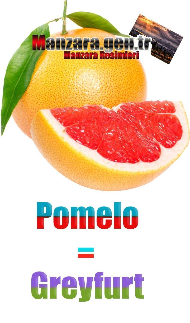 Greyfurtun İspanyolcası (Pomelo)