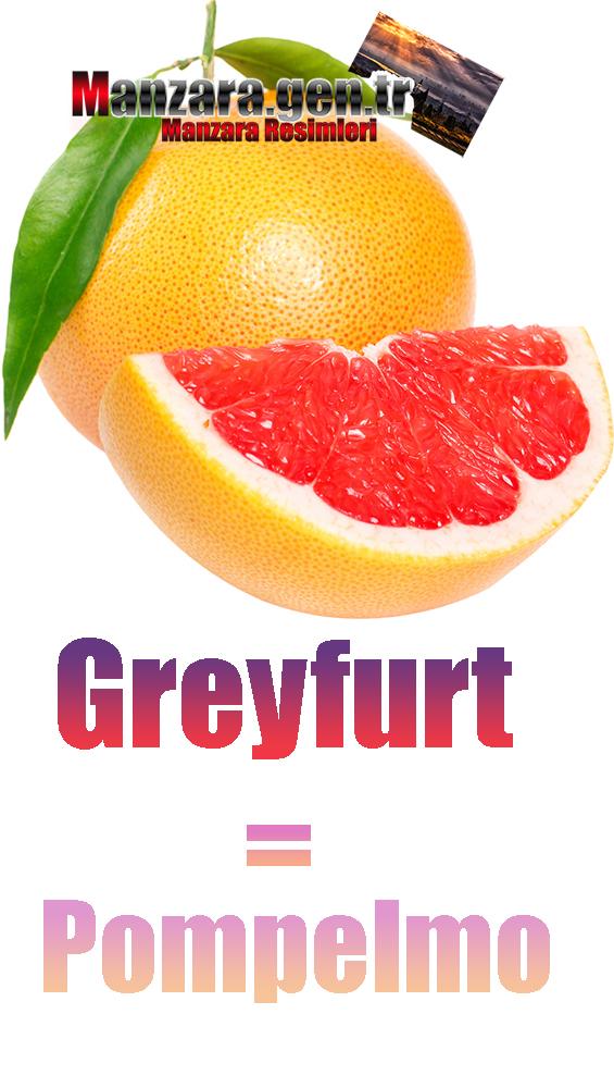 Greyfurtun İtalyancası Nedir ? Greyfurt İtalyanca Nasıl Yazılır ? Che cos'è il turco in pompelmo? Come scrivere pompelmo in turco?