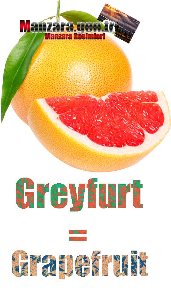 Greyfurtun Almancası Nedir ? Greyfurt Almanca Nasıl Yazılır ? Was ist Grapefruit Türkisch? Wie schreibe ich Grapefruit auf Türkisch?
