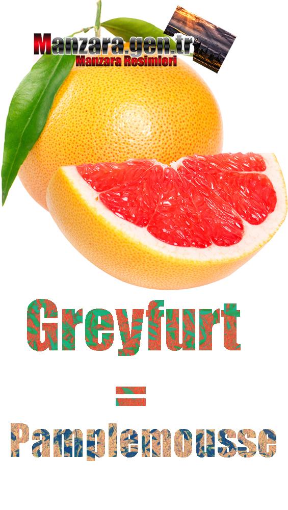 Greyfurtun Fransızcası Nedir ? Greyfurt Fransızca Nasıl Yazılır ? Quel est le turc de pamplemousse ? Comment écrire la pamplemousse en turc?