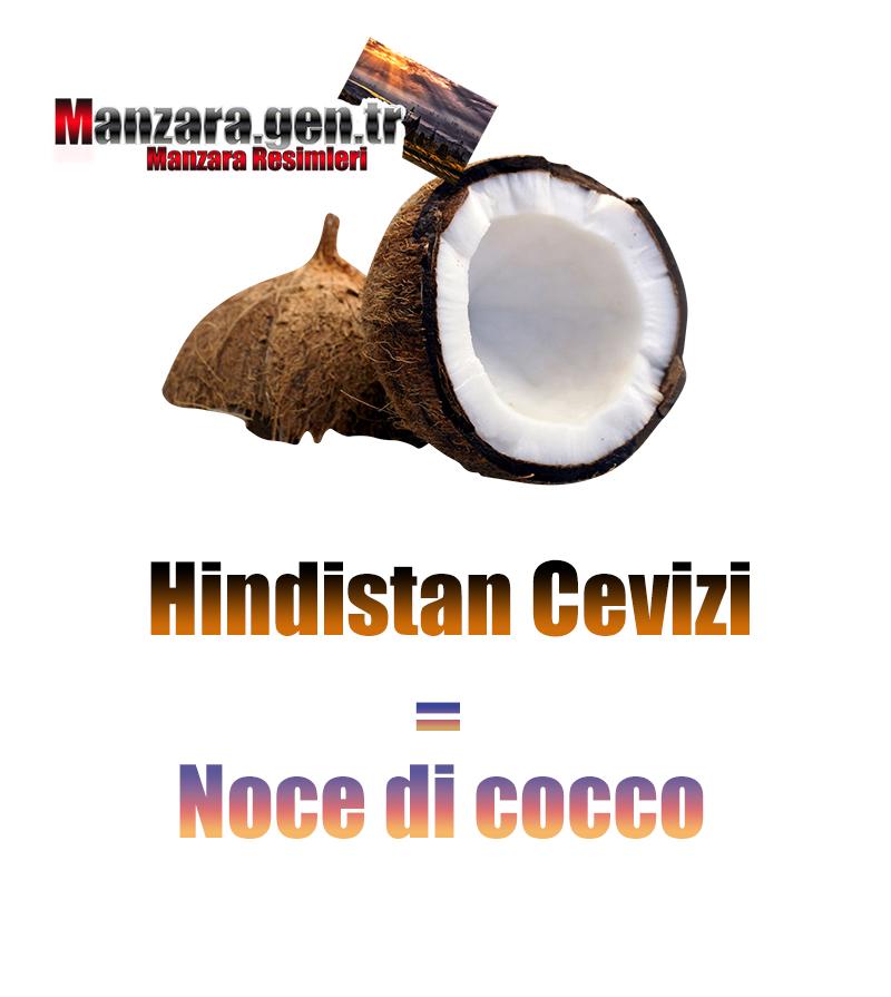 Hindistan Cevizinin İtalyancası Nedir ? Hindistan Cevizi İtalyanca Nasıl Yazılır ? Che cos'è il turco in Noce di cocco? Come scrivere Noce di cocco in turco?